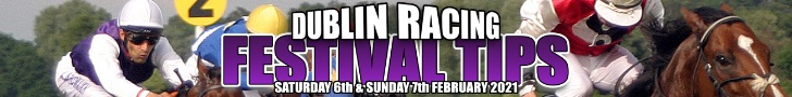 Dublin Racing Festival Tips
