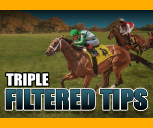 Triple Filtered Tips